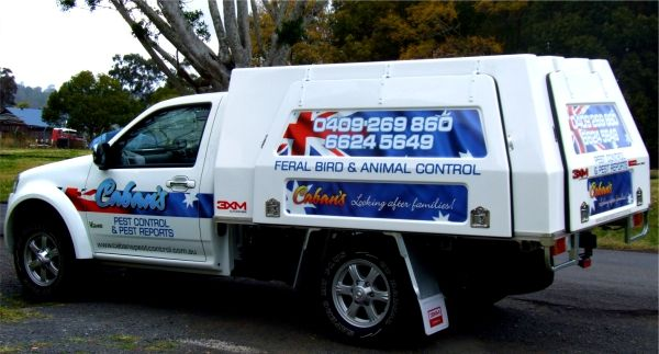 Commercial vehicle signs